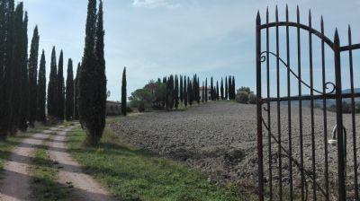 Schnäppchen: Villa di Campagna, als charmantes Landhotel geeignet Bauernhaus Casciana Terme Lari (2JVD94J)